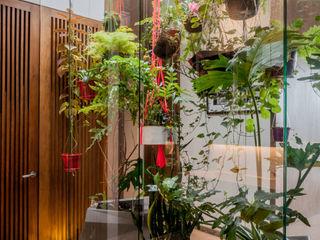 Martínez Arquitectura Zen garden