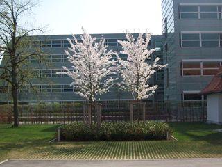 Garten-Landschaftsbau Hierreth-Felser GmbH Сад в стиле лофт