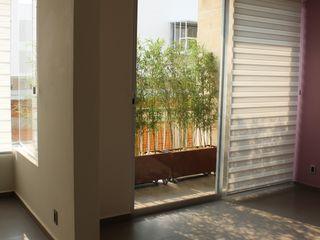 TP618 Living room Glass Purple/Violet
