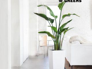 Glastres Greens Vorgarten