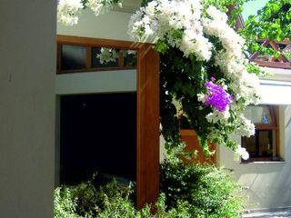 Aida tropeano& Asociados Klasik Bahçe Bambu Yeşil
