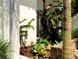 Residencia Coelho, Jardim. STUDIO AGUIAR E DINIS Jardines de estilo moderno