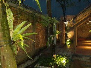 sony architect studio Tropical style garden