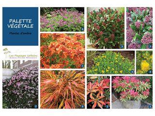 Palette végétale LES PAYSAGES URBAINS Jardin moderne