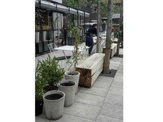 Barragan Carpinteria Interior landscaping Parket