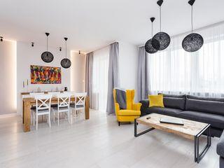 AIN projektowanie wnętrz Scandinavian style living room