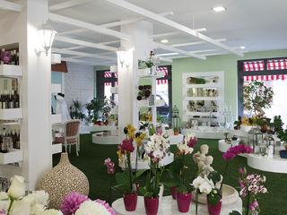 ShiStudio Interior Design Eclectic style study/office