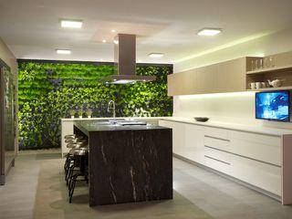 JACARANDAS HOUSE Hernandez Silva Arquitectos 現代廚房設計點子、靈感&圖片