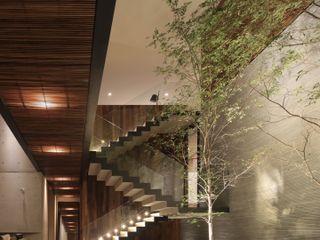 HNN HOUSE Hernandez Silva Arquitectos 樓梯