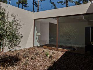 isabel Sá Nogueira Design Modern Bahçe