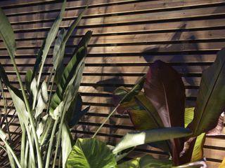 Ecossistemas Zen garden Yellow
