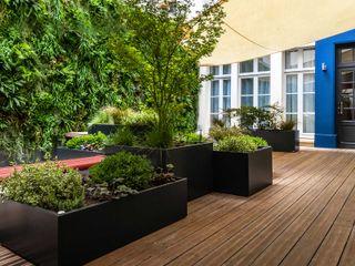 Composition végétale pour Hôtel de prestige avec les jardinières sur mesure IMAGE'IN ATELIER SO GREEN Balcon, Veranda & TerrassePlantes et fleurs