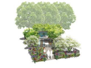 Conceptual Design for RHS Chelsea Aralia Jardins zen Ardósia Verde