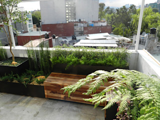 Paisaje Radical Modern terrace