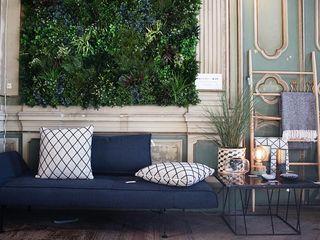 Wonder Wall - Jardins Verticais e Plantas Artificiais Salon moderne