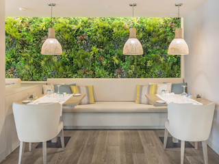 Wonder Wall - Jardins Verticais e Plantas Artificiais Salle à manger moderne