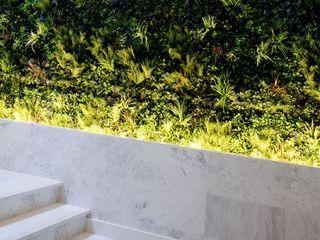 Wonder Wall - Jardins Verticais e Plantas Artificiais Jardin moderne