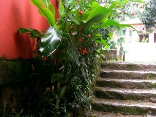 Residência em Paraty Oria Arquitetura & Construções Escadas Pedra