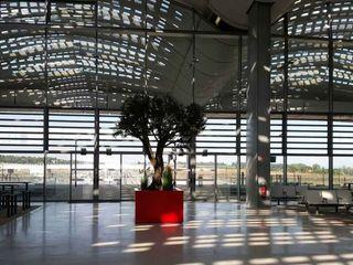 Grands Bacs à arbre STEELAB en aluminium – Gare TGV Montpellier ATELIER SO GREEN Locaux commerciaux & Magasin modernes Aluminium/Zinc Rouge