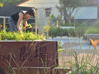FAMWOOD 自然紅屋 Garden Plants & flowers