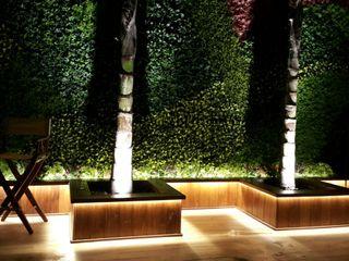 Arquitectura Orgánica Viviana Font Balconies, verandas & terraces Lighting