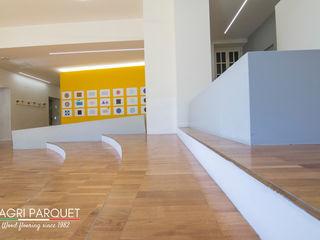Magri Parquet Modern corridor, hallway & stairs Engineered Wood Brown