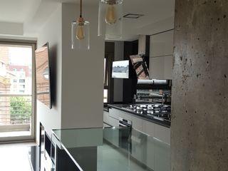 MONARQ ESTUDIO Built-in kitchens Glass Black