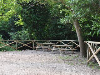 ONLYWOOD Garden Fencing & walls Wood