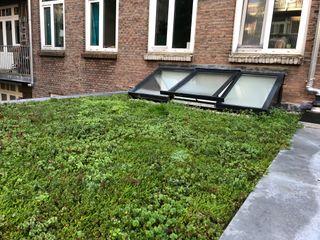 Studioschaeffer Architecten BNA Roof