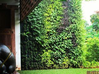 Tukang Taman Vertikal Malang NISCALA GARDEN   Tukang Taman Surabaya