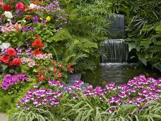 Inova Diseño y Decoracion Estanques de jardín Azulejos Multicolor