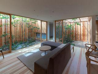 arbol Salas de estilo minimalista
