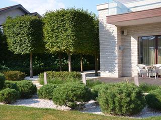 ARCADIA GARDEN Landscape Studio Jardin avant