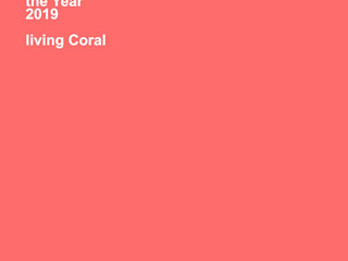 Estudio Coral Pragma - Diseño Oficinas y Tiendas Rosa