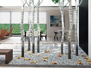 Interiorismo y amueblamiento para casa en Alicante Tono Lledó Estudio de Interiorismo en Alicante Jardines de invierno de estilo moderno