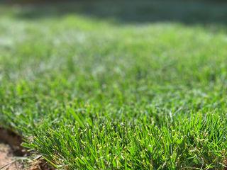 N.G Konutu Hazır Rulo Çim Uygulaması & Otomatik Sulama Sistemi konseptDE Peyzaj Fidancılık Tic. Ltd. Şti. Klasik Bahçe