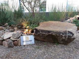 Bizzarri Pedras Сад каміння Камінь