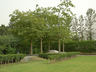 Tanish Dzignz Modern style gardens