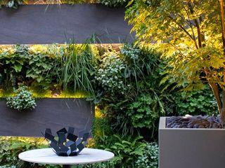 Living Wall Courtyard Garden MyLandscapes Garden Design 모던스타일 정원