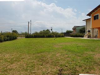 Verde Progetto - Adriana Pedrotti Garden Designer Front garden