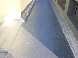 Speciality Waterproof & Roof Atap datar Beton Metallic/Silver