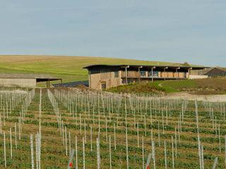 Rathfinny Winery - Designcubed Architects Designcubed Nhà hàng