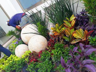 EcoEntorno Paisajismo Urbano Jardin avant Multicolore
