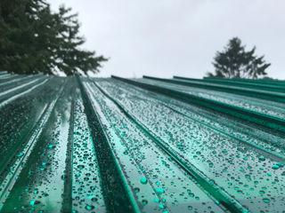 Il Giardino delle Idee Roof terrace Plastic Green