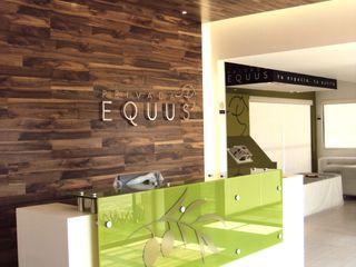 DE LEON PRO Pusat Eksibisi Modern Kayu Green
