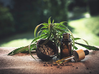 What are the Benefits of using CBD capsules? Greatlittlegarden