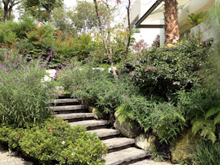 Ambiente Arquitectos Asociados, S.A de C.V. Jardins rústicos