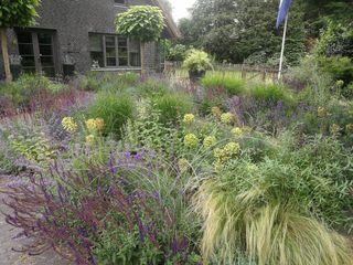 Purple mood Rosin Manuel Garden deSign Giardino moderno