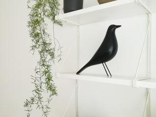 RENOVATION D'UN APPARTEMENT Lionel CERTIER - Architecture d'intérieur Salon moderne