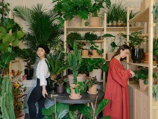 Plant Room Cuemars Event Venue Tropis Green